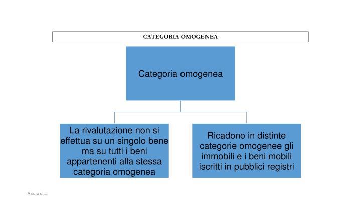 CATEGORIA OMOGENEA