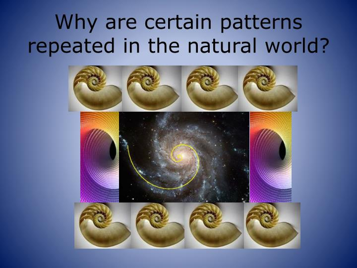 Why are certain patterns repeated in the natural world?