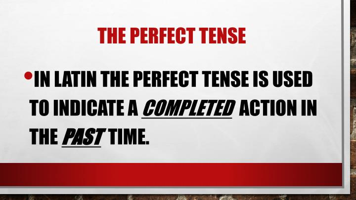 The perfect tense1