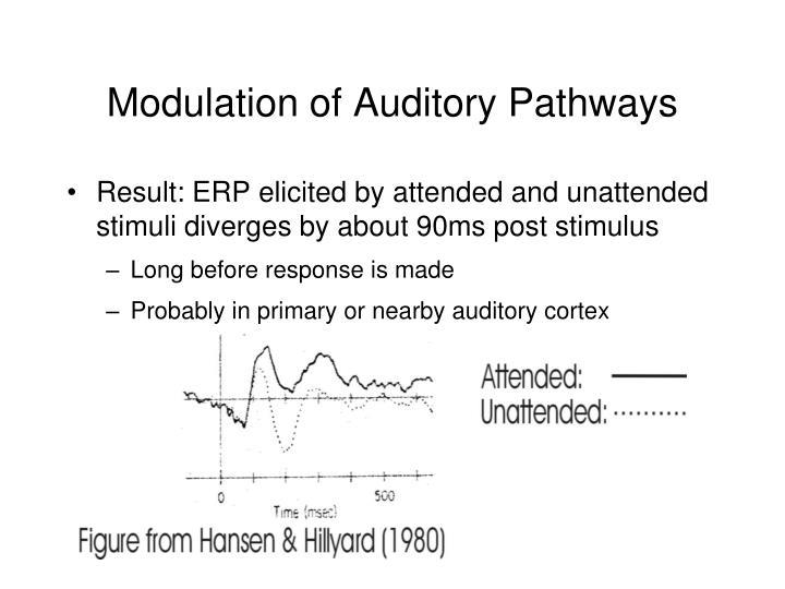 Modulation of Auditory Pathways