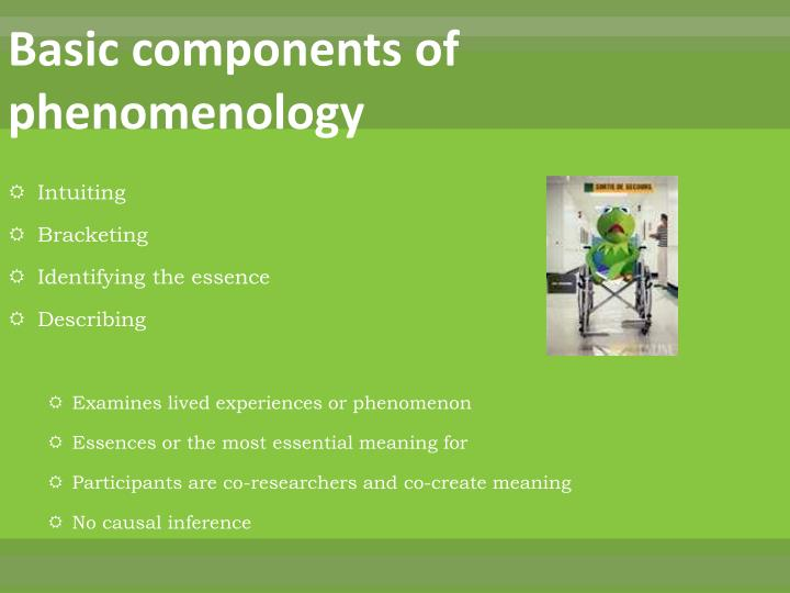 Basic components of phenomenology