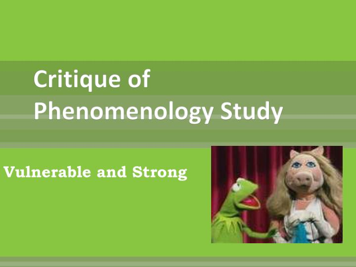 Critique of Phenomenology Study