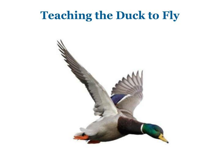 Teaching the Duck to Fly