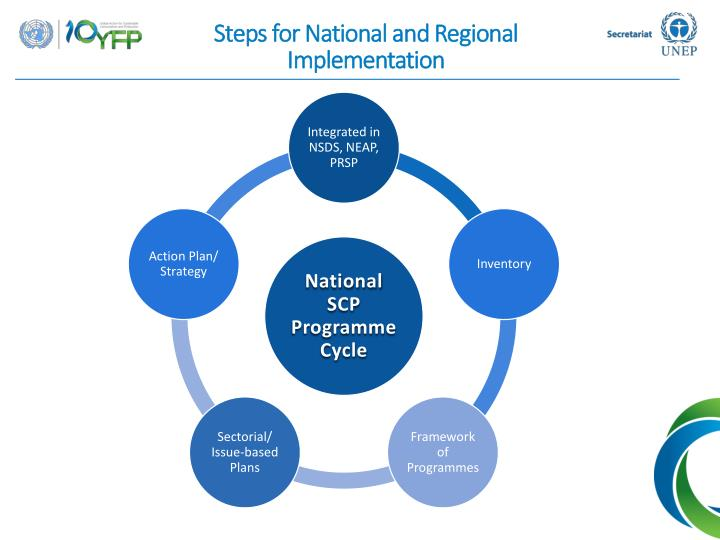 Steps for National and Regional Implementation
