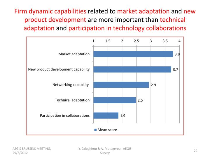 Firm dynamic capabilities