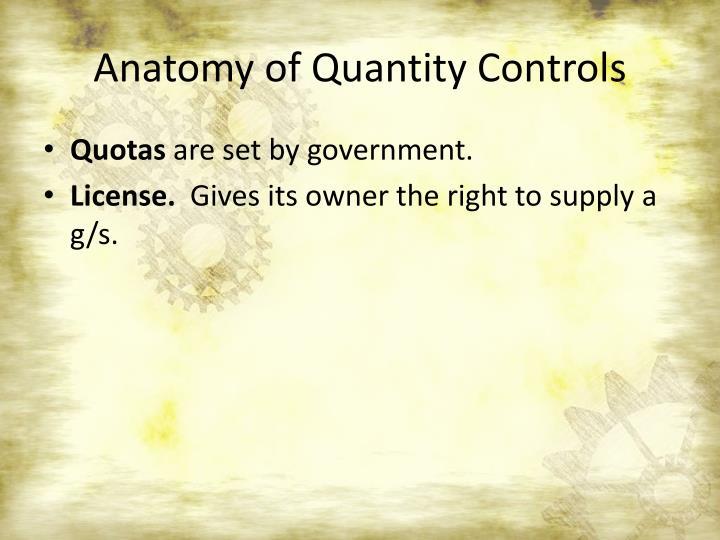 Anatomy of Quantity Controls