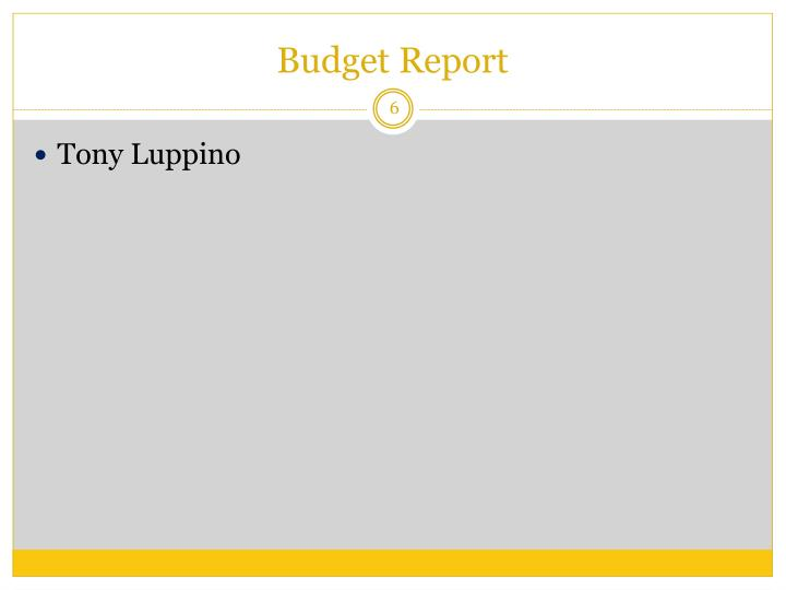 Budget Report