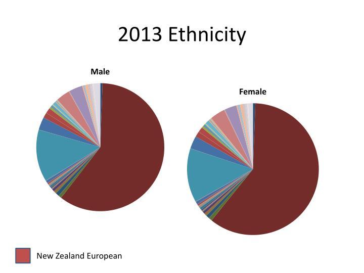 2013 Ethnicity
