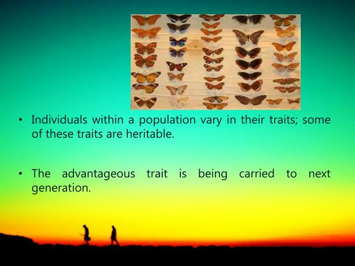 Individuals within a population vary in their traits; some of these traits are heritable.