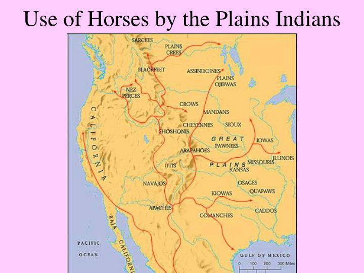 Use of Horses by the Plains Indians