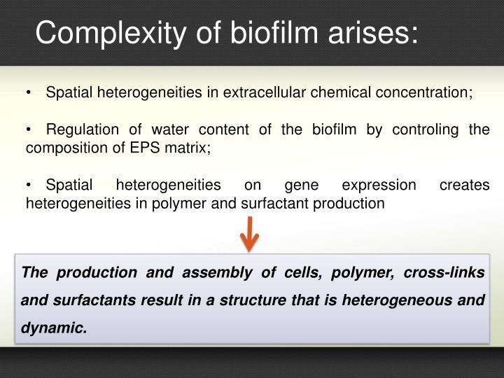 Complexity of biofilm arises: