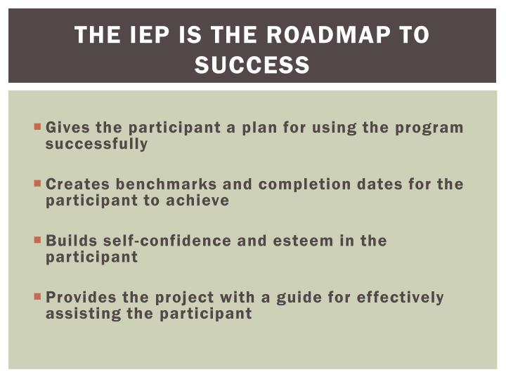 The IEP is the Roadmap to Success