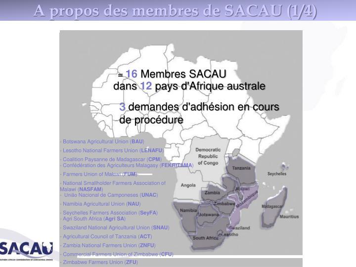 A propos des membres de SACAU (1/4)