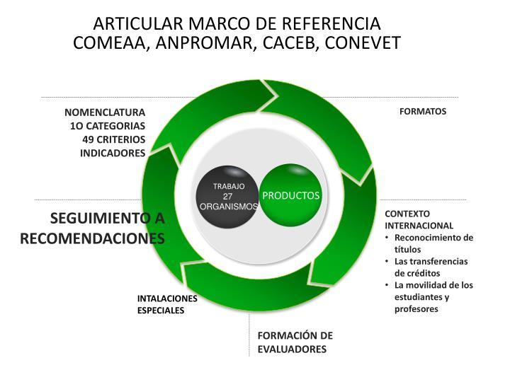 ARTICULAR MARCO DE REFERENCIA