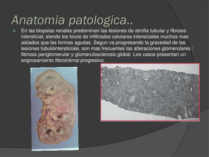 Anatomia patologica..