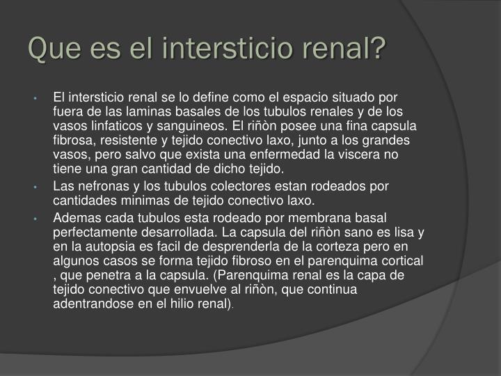 Que es el intersticio renal?