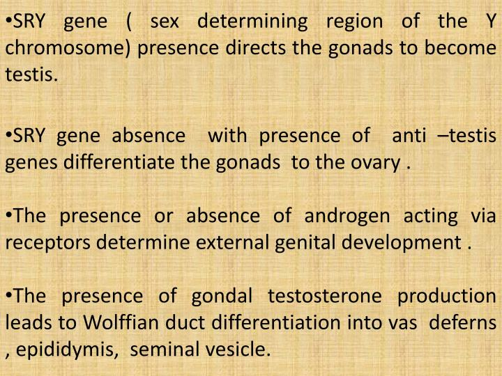 SRY gene ( sex determining region of the Y chromosome) presence directs the gonads to become testis.