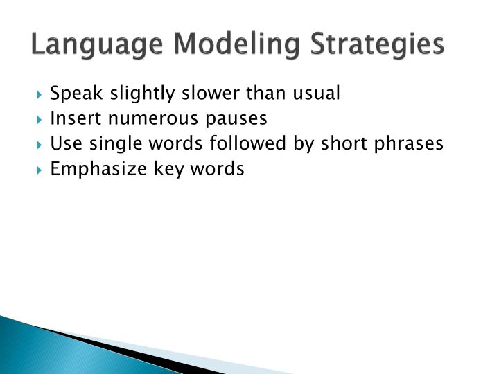 Language Modeling Strategies