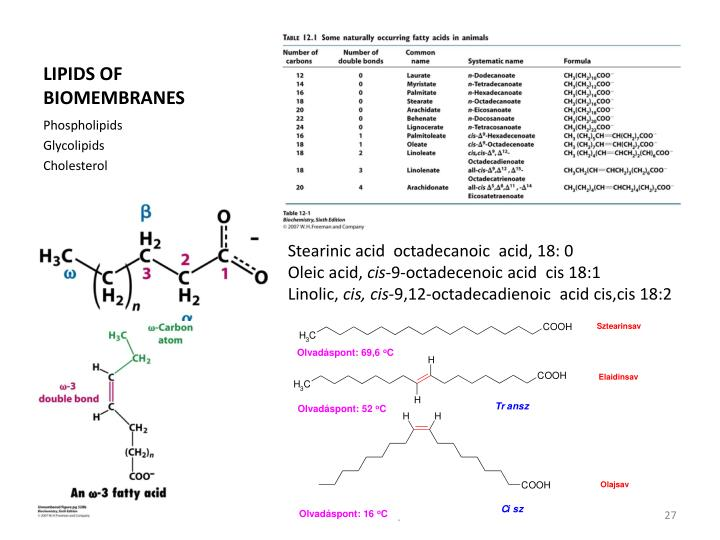 LIPIDS OF BIOMEMBRANES