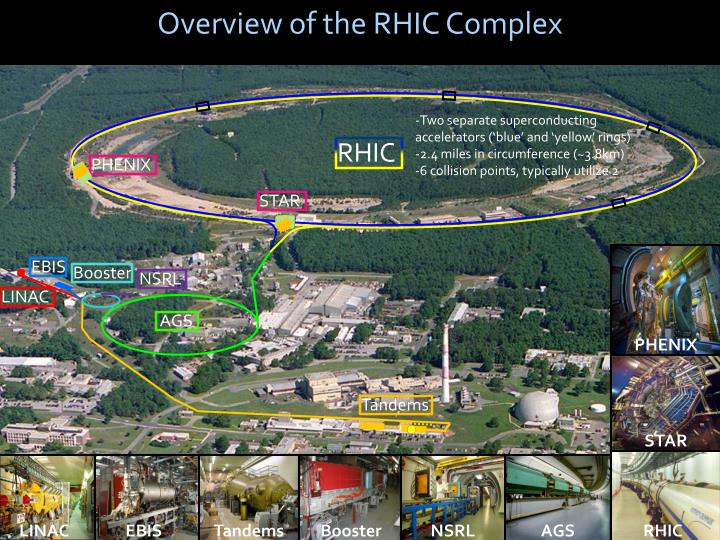 Overview of the RHIC Complex
