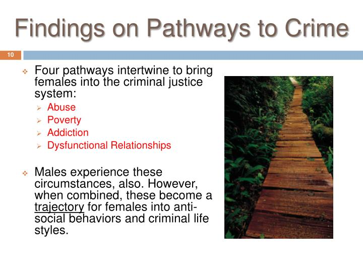 Findings on Pathways to Crime