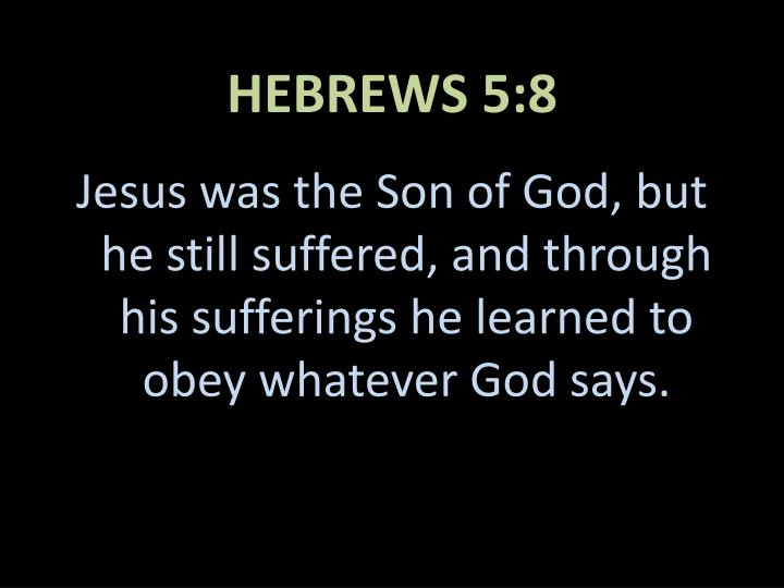 HEBREWS 5:8