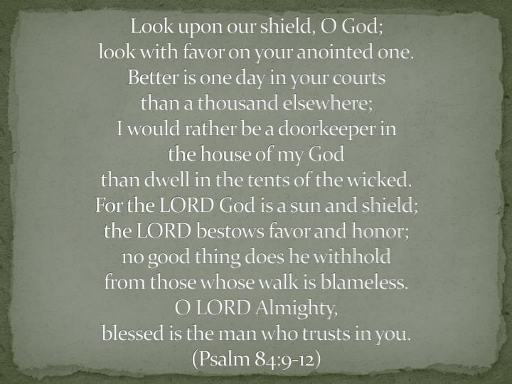 Look upon our shield, O God;