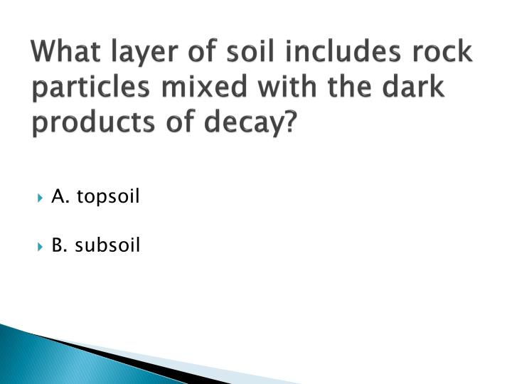 What layer of soil includes rock particles mixed with the dark products of decay?