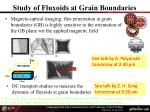 study of fluxoids at grain boundaries