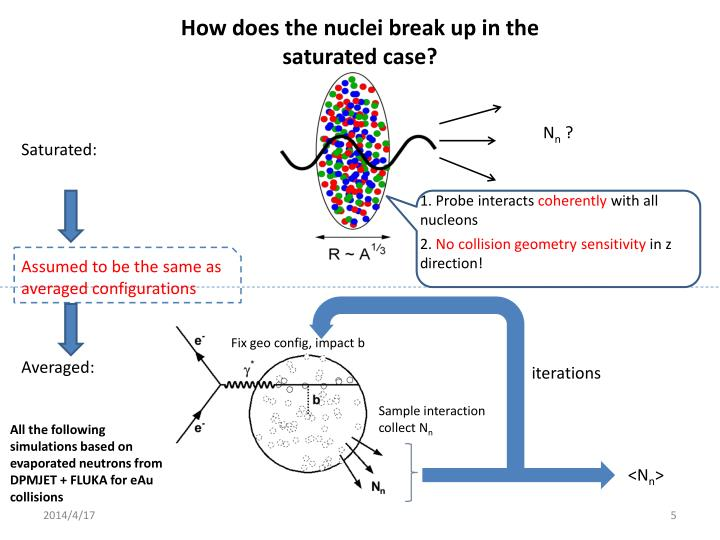 How does the nuclei break up in the saturated case?
