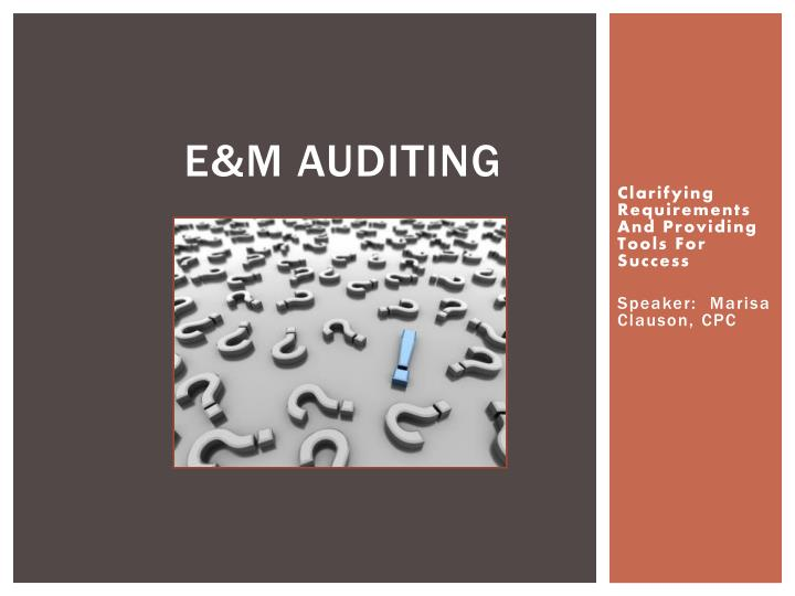 E m auditing