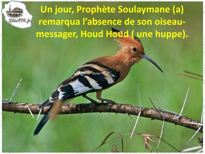 Un jour, Prophète