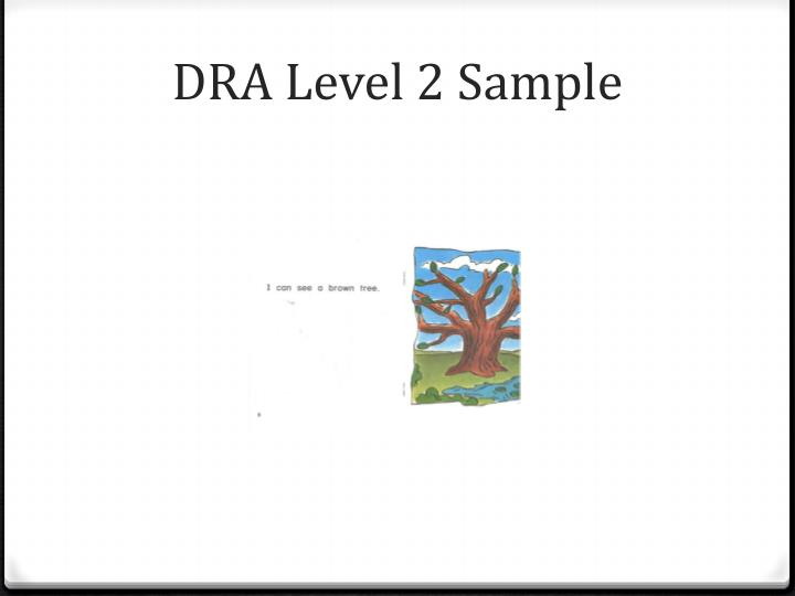 DRA Level 2 Sample