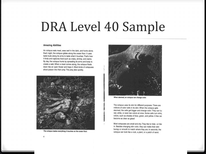 DRA Level 40 Sample