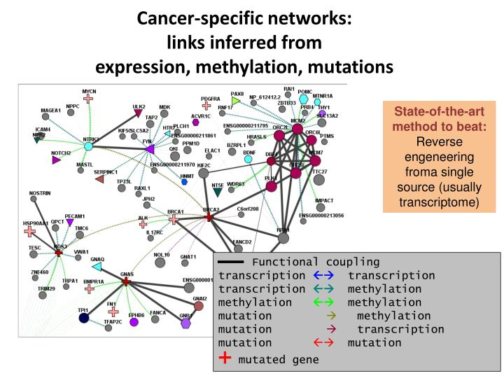 Cancer-specific networks: