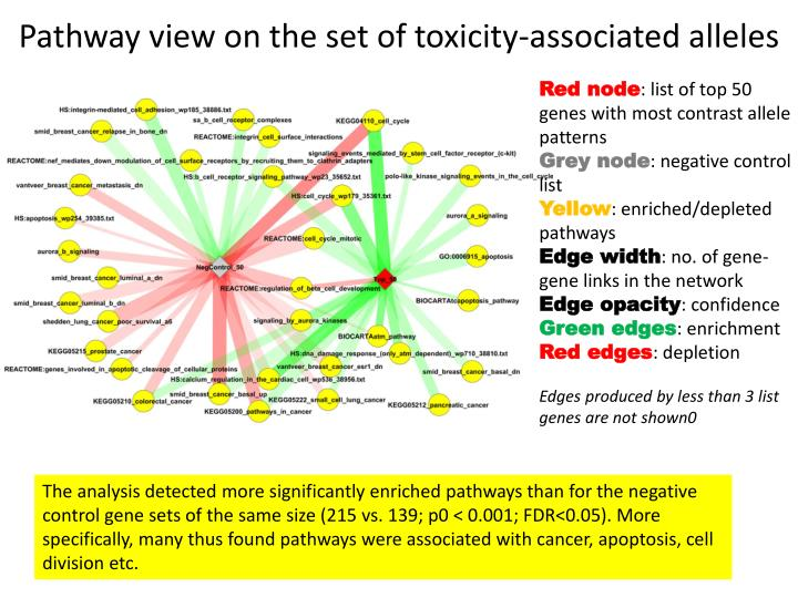 Pathway view on the set of toxicity-associated alleles