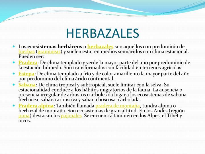 HERBAZALES