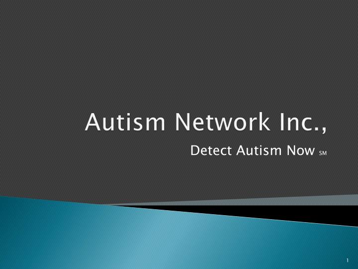 Autism network inc