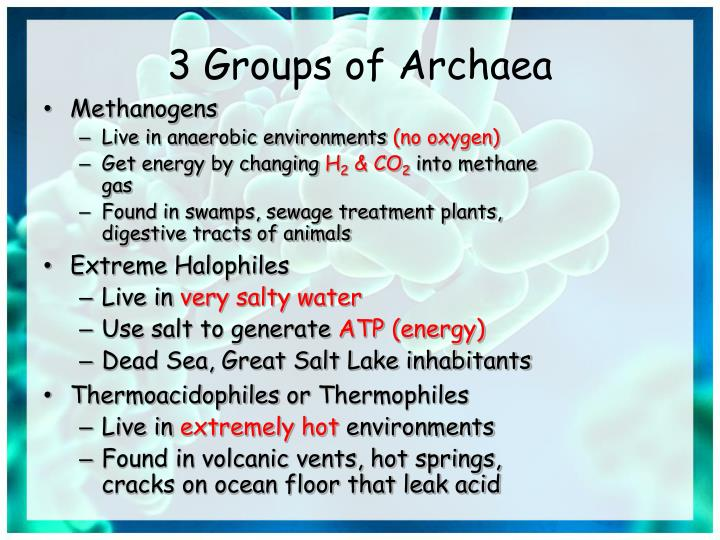 3 Groups of Archaea