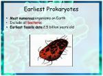 earliest prokaryotes
