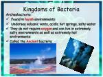 kingdoms of bacteria
