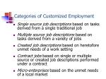 categories of customized employment