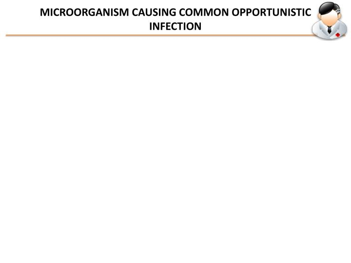 MICROORGANISM CAUSING COMMON OPPORTUNISTIC INFECTION