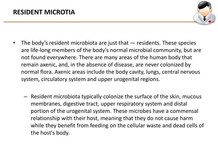 RESIDENT MICROTIA