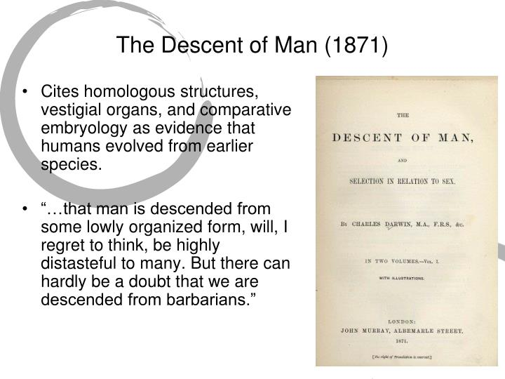The Descent of Man (1871)