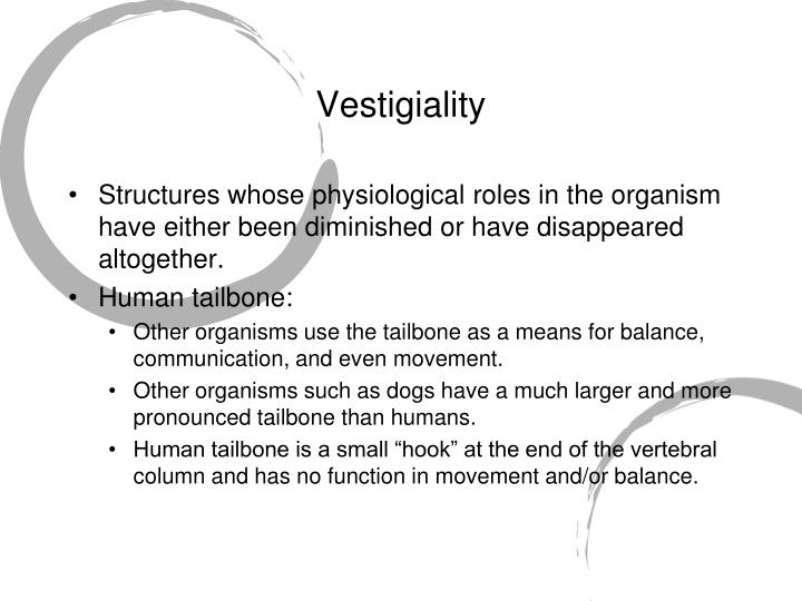 Vestigiality