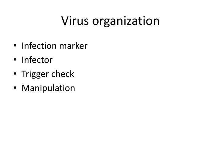 Virus organization