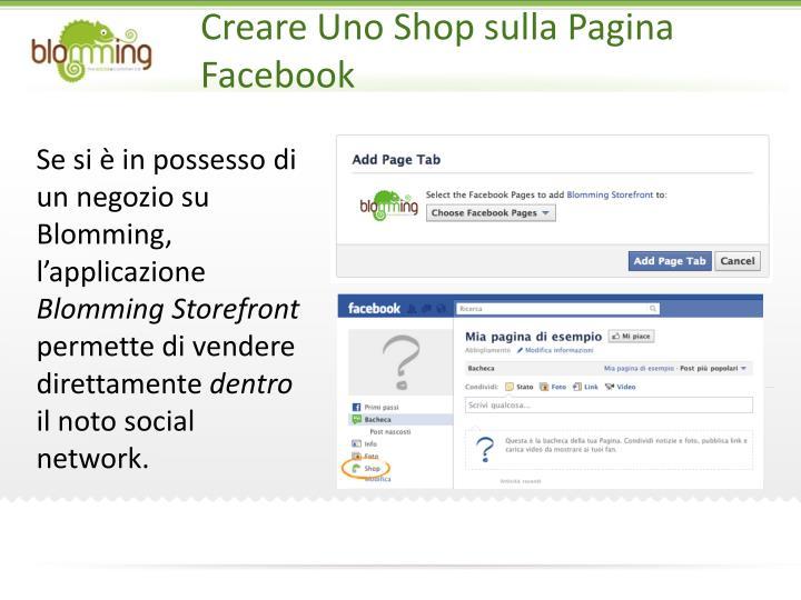 Creare Uno Shop sulla Pagina