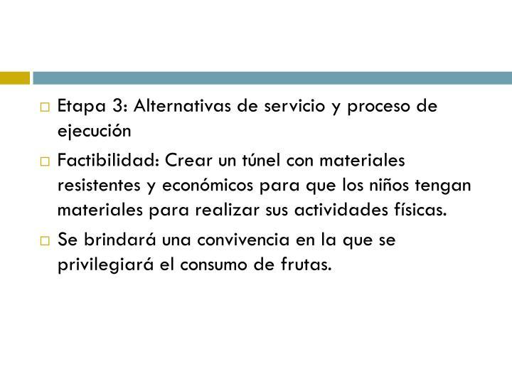 Etapa 3: Alternativas de servicio y proceso de ejecución