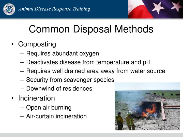 Common Disposal Methods